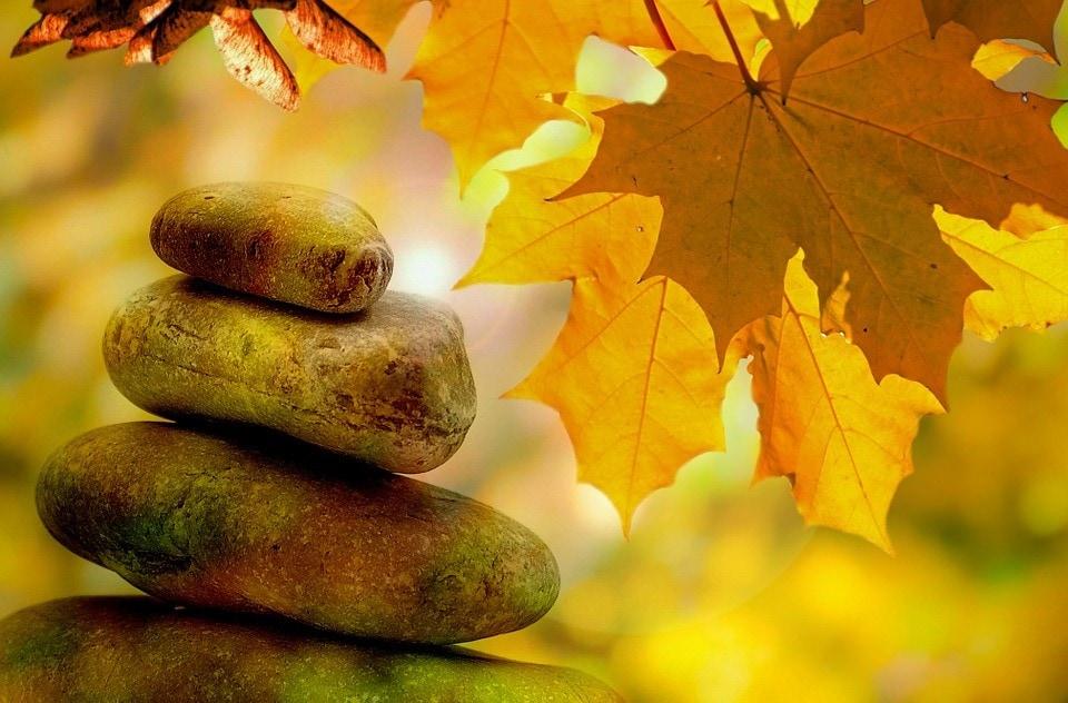 November Mindfulness, Meditation, and Technology Roundup